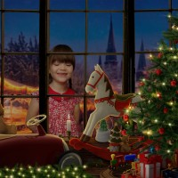 Christmas Mini Sessions – Without Leaving the House